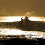 Rosie Hodge J-Bay South Africa