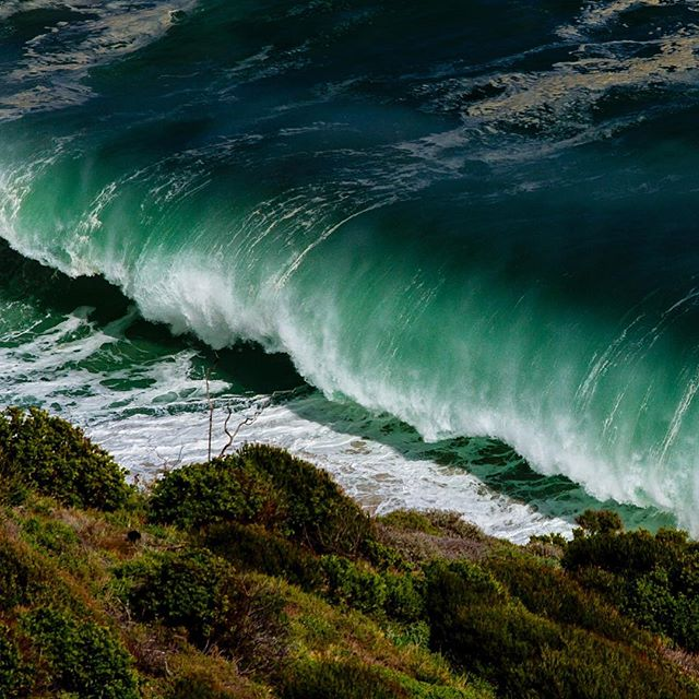 F A L L #surferphotos#ocean #wave#Atlantic