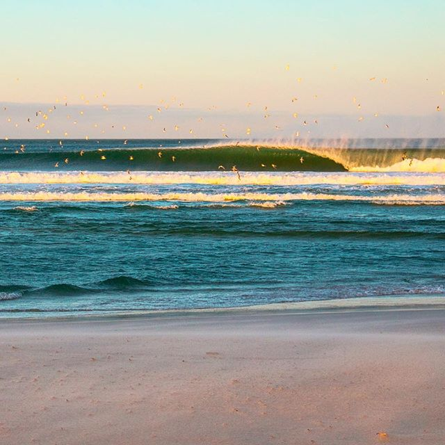 Gold rush.#surferphotos#ocean #waves#atlantic